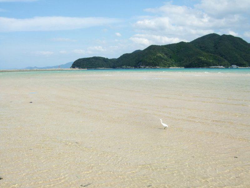 五島列島の海岸の写真